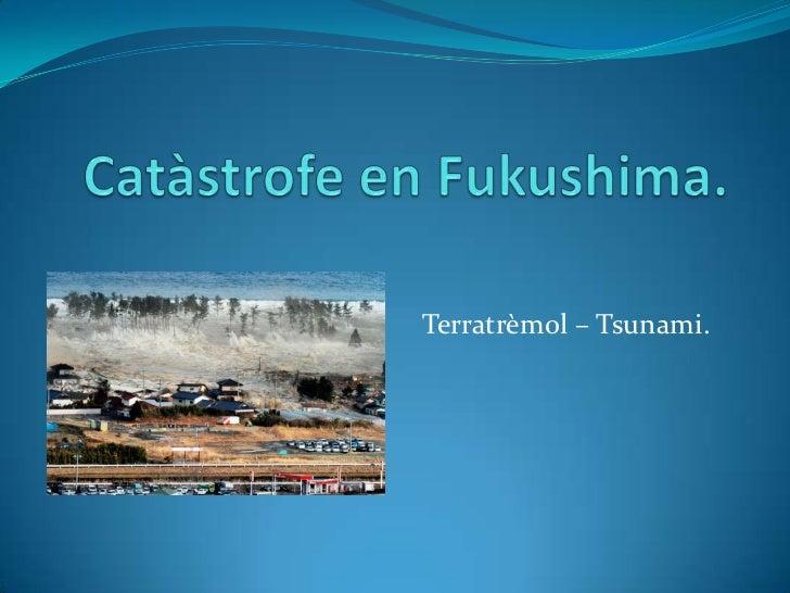 Catàstrofe en Fukushima.<br />Terratrèmol – Tsunami.<br />