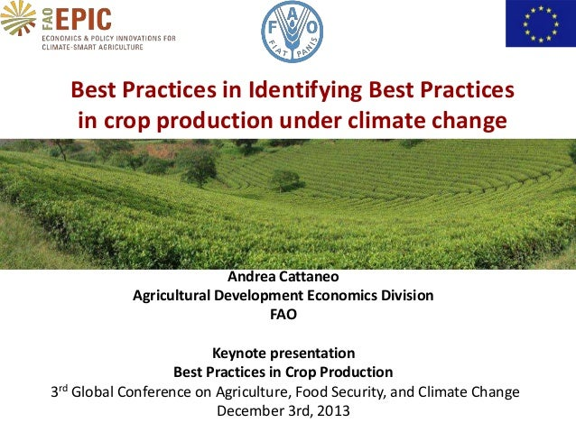 Best Practices in Identifying Best Practices in crop production under climate change  Andrea Cattaneo Agricultural Develop...