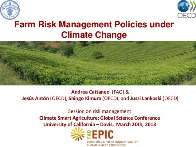 Andrea Cattaneo (FAO) & Jesús Antón (OECD), Shingo Kimura (OECD), and Jussi Lankoski (OECD) Session on risk management Cli...