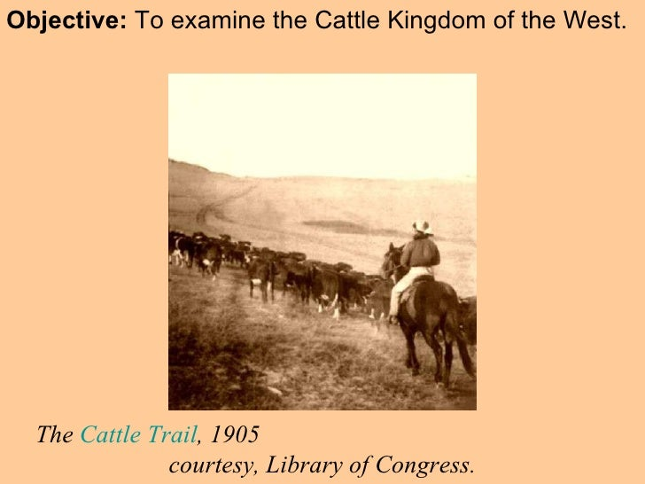 Objective:  To examine the Cattle Kingdom of the West. The  Cattle Trail , 1905  courtesy, Library of Congress.