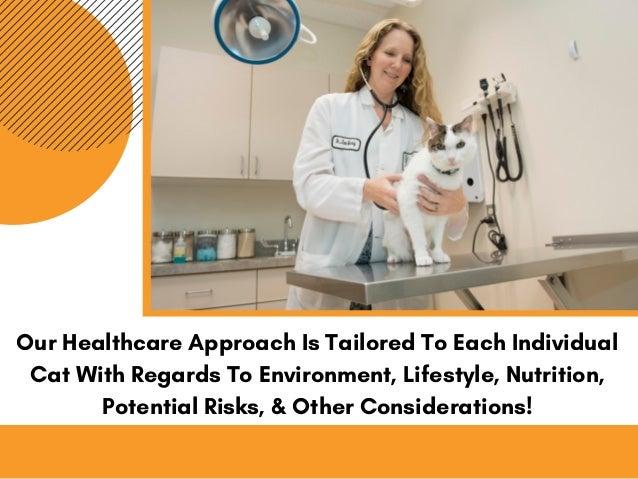 Veterinary Technician