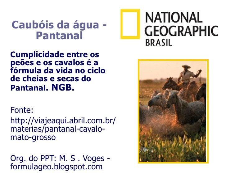 Caubóis da água -    PantanalCumplicidade entre ospeões e os cavalos é afórmula da vida no ciclode cheias e secas doPantan...