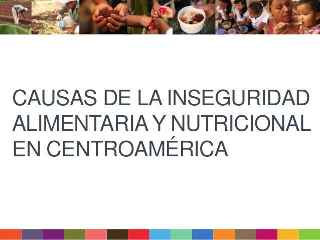 CAUSAS DE LA INSEGURIDAD ALIMENTARIA Y NUTRICIONAL EN CENTROAMÉRICA