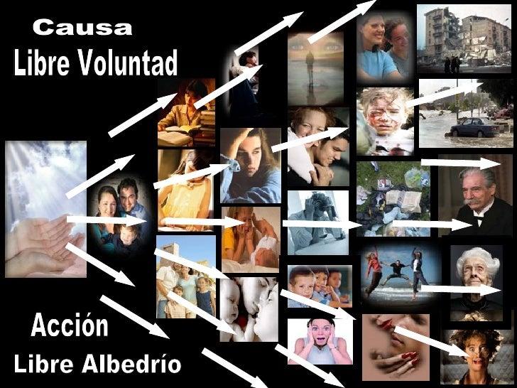 Causa Libre Voluntad Libre Albedrío Acción