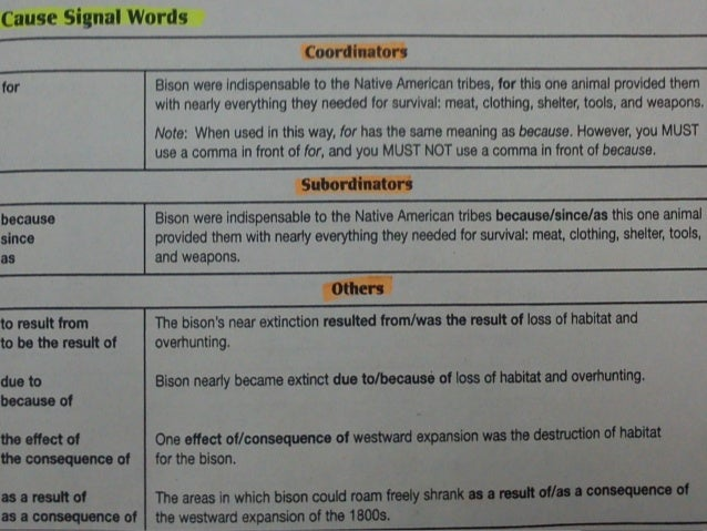 animal extinction essay species near extinction photo essays time  cause and effect essay 6
