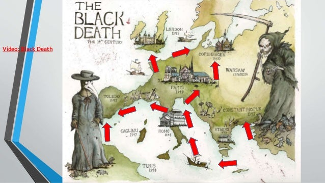 Cause effect of the crusades the black death video black death gumiabroncs Images