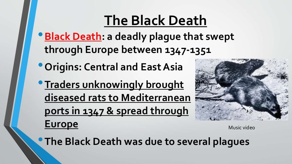 cause  u0026 effect of the crusades  u0026 the black death