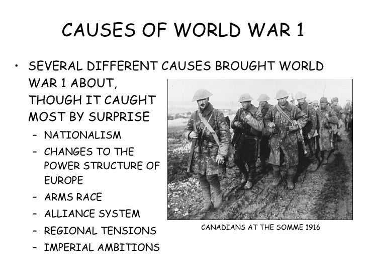 the different causes of the first great war