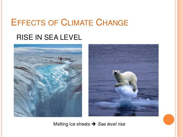 essay climate change effects causes Free 750 words essay on polar ice caps melting: causes and effects for school and college students the issue of climate change is no more the prerogative of diplomatic talks given the scale of destruction and.
