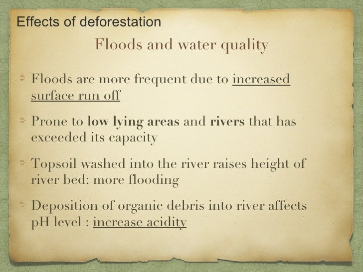 Causes of deforestation essays