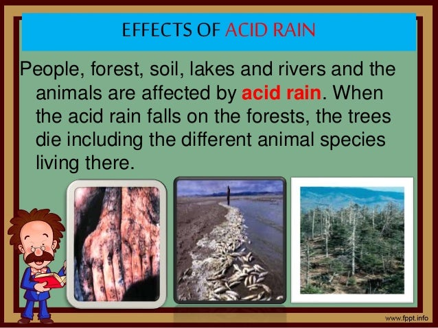 Keynotes on Acid Rain and Its Causes