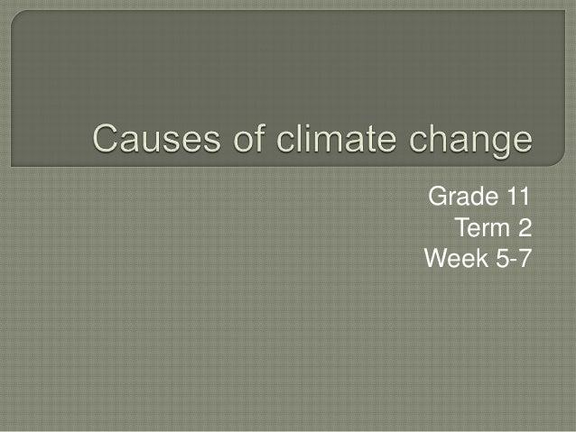 Grade 11 Term 2 Week 5-7