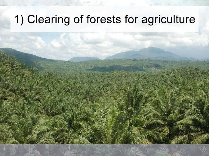main causes deforestation This work—causes of deforestation of the brazilian amazon—appears in this context the central issue which it attempts to study is the role of cattle ranching—its dynamic and profitabili.