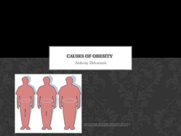 CAUSES OF OBESITY  Anthony Delorenzis       Victovoi, 2010, Obesity-waist_circumfrence, Febuary 14, 2012. Retrieved from  ...