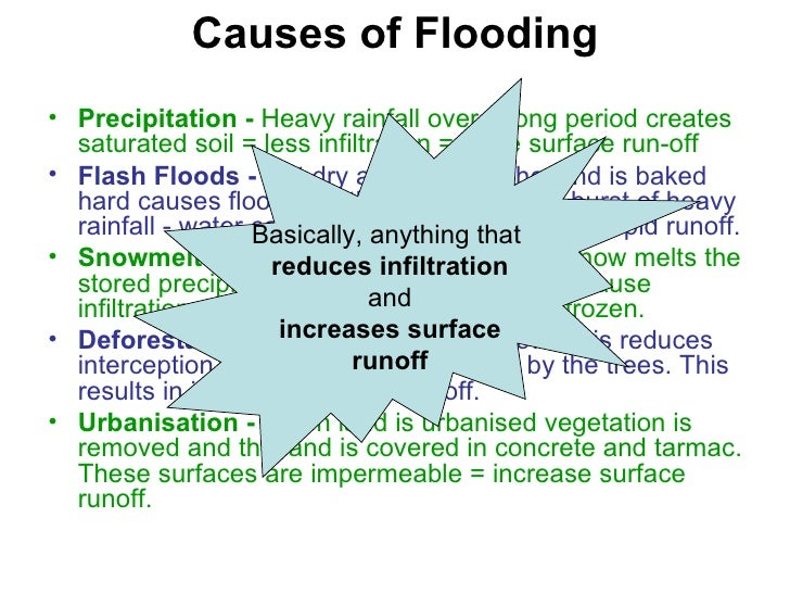 the causes of flood How do people make flooding more common  leaves reduce raindrop impact,  and gentler rain causes less erosion tree roots absorb water from the soil,.