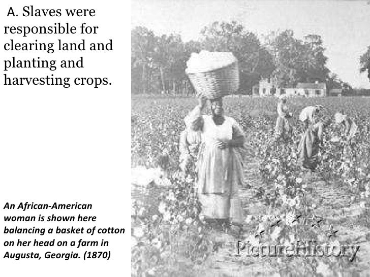 the issue of slavery in the civil war Civil war, economic causes of (issue) the economic roots of the civil war reach almost to the beginning of english settlement in north americathe development of an economy based on the use of slave labor to produce staple crops through a plantation system in the south and a more diverse economy in the north based on free labor set the stage for the development of two economies within one .