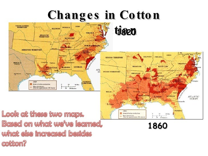 Causes Of The Civil War Slavery - Us cotton production map