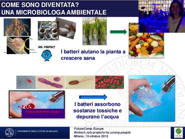 """La potenza dei piccoli:i batteri """"probiotici"""" dell'ambiente - Lucia Cavalca Slide 3"""