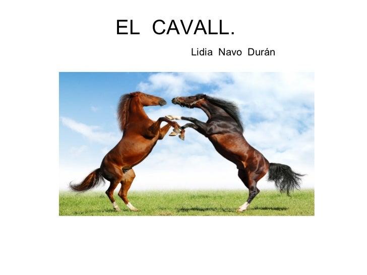 EL  CAVALL.    Lidia  Navo  Durán