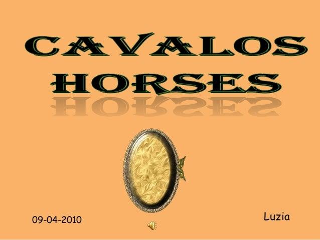 09-04-2010   Luzia