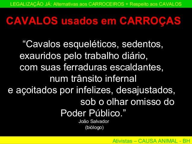"""Ativistas – CAUSA ANIMAL - BH LEGALIZAÇÃO JÁ: Alternativas aos CARROCEIROS + Respeito aos CAVALOS """"Cavalos esqueléticos, s..."""