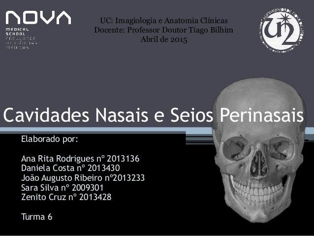 Cavidades Nasais e Seios Perinasais Elaborado por: Ana Rita Rodrigues nº 2013136 Daniela Costa nº 2013430 João Augusto Rib...