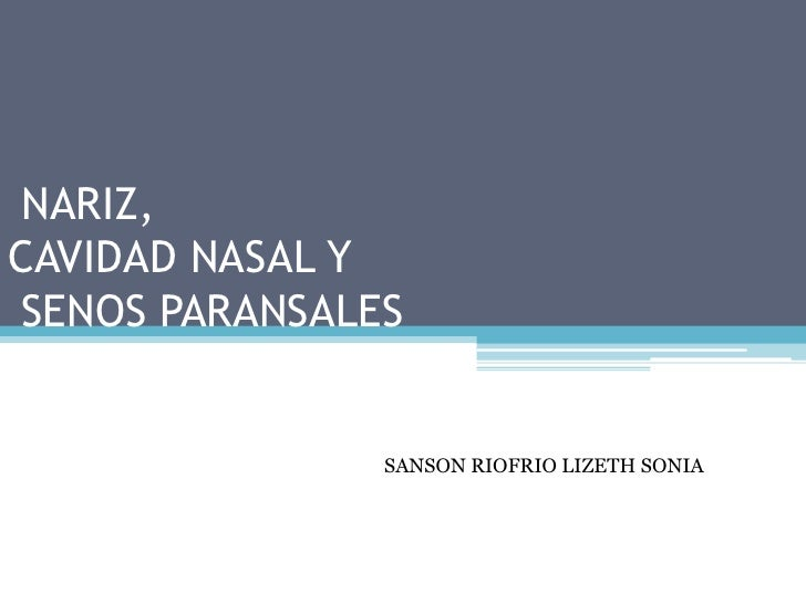 NARIZ, CAVIDAD NASAL Y SENOS PARANSALES <br />SANSON RIOFRIO LIZETH SONIA<br />