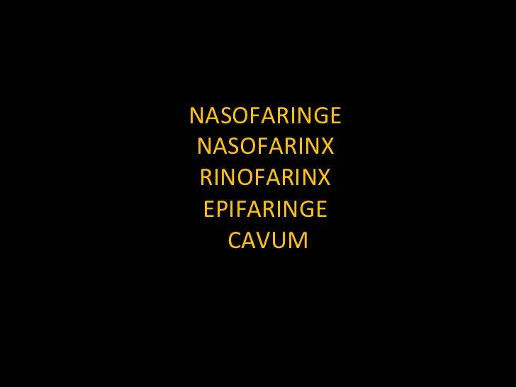 NASOFARINGE NASOFARINX RINOFARINX EPIFARINGE CAVUM