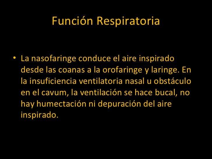 Función Respiratoria <ul><li>La nasofaringe conduce el aire inspirado desde las coanas a la orofaringe y laringe. En la in...