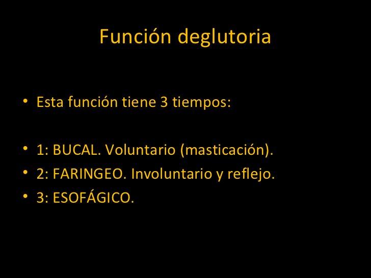 Función deglutoria <ul><li>Esta función tiene 3 tiempos: </li></ul><ul><li>1: BUCAL. Voluntario (masticación).  </li></ul>...