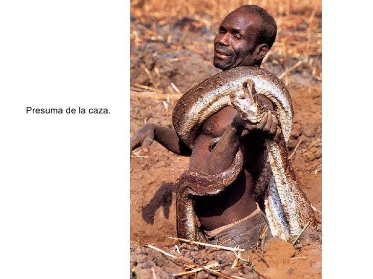 Cazador de serpientes serpiente por la vagina - 2 4
