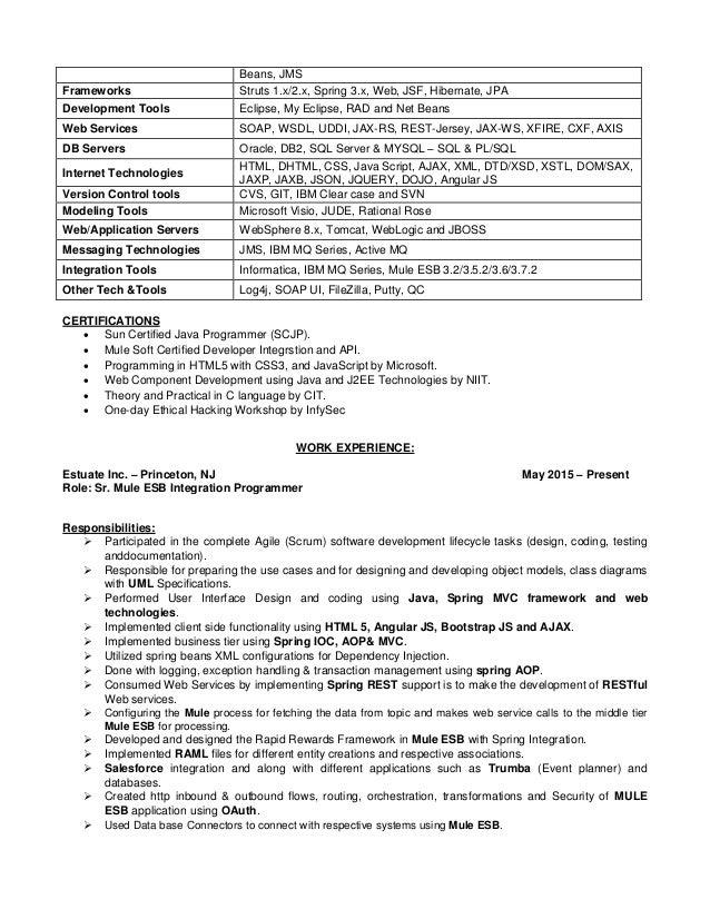 struts resume