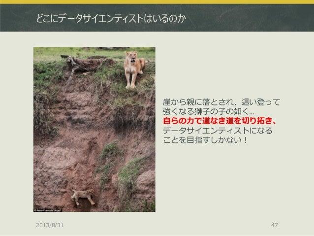 どこにデータサイエンティストはいるのか 崖から親に落とされ、這い登って 強くなる獅子の子の如く… 自らの力で道なき道を切り拓き、 データサイエンティストになる ことを目指すしかない! 2013/8/31 47