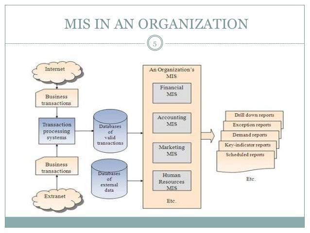 important of mis To gain the maximum benefits from your company's information system, you have to exploit all its capacities information systems gain their importance by processing the data from company inputs to generate information that is useful for managing your operations to increase the information system's.