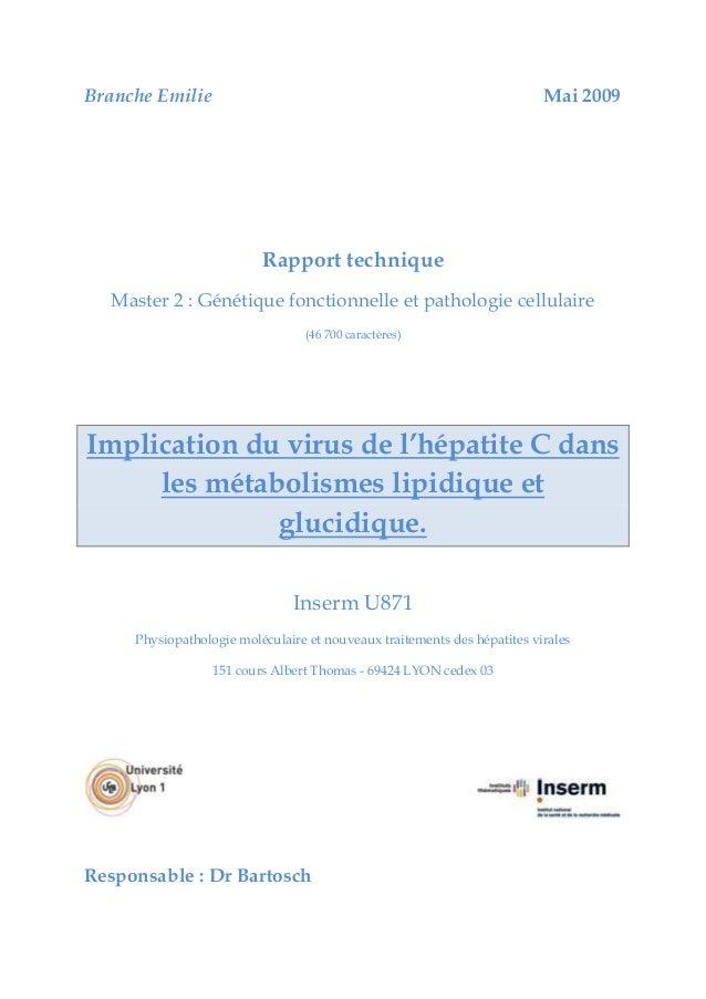 Branche Emilie Mai 2009 Rapport technique Master 2 : Génétique fonctionnelle et pathologie cellulaire (46 700 caractères) ...
