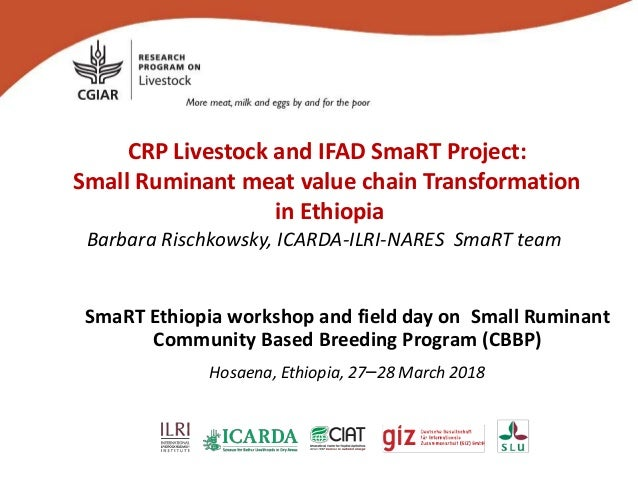CRP Livestock and IFAD SmaRT Project: Small Ruminant meat value chain Transformation in Ethiopia Barbara Rischkowsky, ICAR...