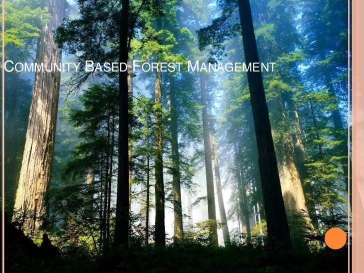 Community Based Forest Management<br />