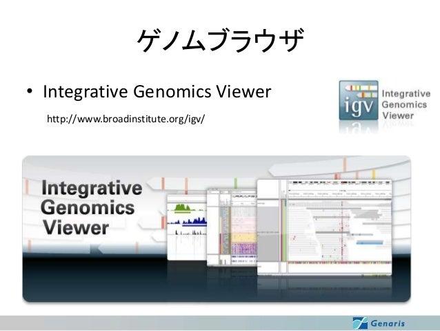 ゲノムブラウザ • Integrative Genomics Viewer http://www.broadinstitute.org/igv/