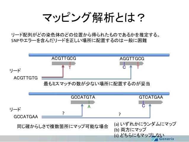 マッピング解析とは? リード配列がどの染色体のどの位置から得られたものであるかを推定する。 SNPやエラーを含んだリードを正しい場所に配置するのは一般に困難  ACGTTGCG  AGGTTGCG C  T  リード ACGTTGTG  T  ...