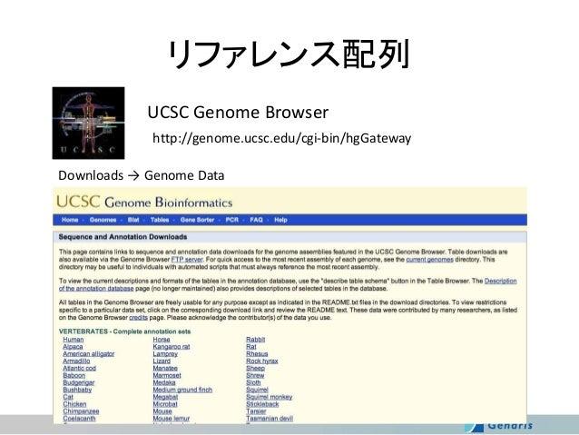リファレンス配列 UCSC Genome Browser http://genome.ucsc.edu/cgi-bin/hgGateway  Downloads → Genome Data