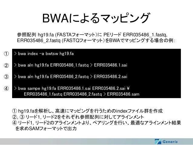BWAによるマッピング 参照配列 hg19.fa (FASTAフォーマット)に PEリード ERR035486_1.fastq, ERR035486_2.fastq (FASTQフォーマット)をBWAでマッピングする場合の例: ①  > bwa...