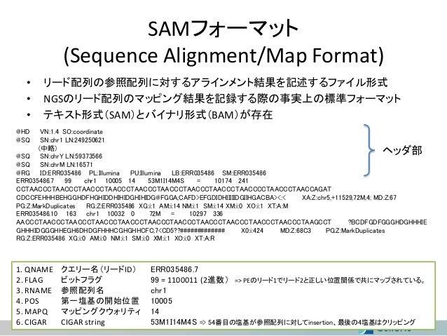 SAMフォーマット (Sequence Alignment/Map Format) • • •  リード配列の参照配列に対するアラインメント結果を記述するファイル形式 NGSのリード配列のマッピング結果を記録する際の事実上の標準フォーマット テ...