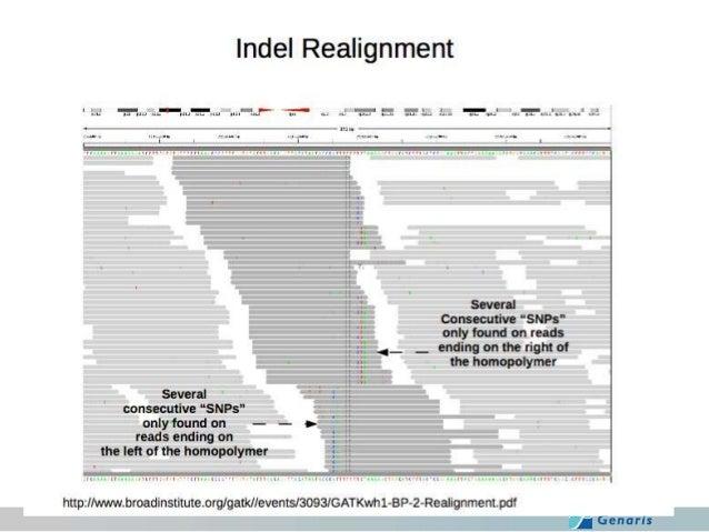 GATKによるリアラインメント ①  ②  > java -jar GenomeAnalysisTK.jar -T RealignerTargetCreator ¥ -R hg19.fa ¥ –I ERR035486.rmdup.bam ¥ –...