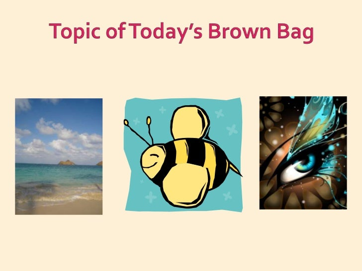 Topic of Today's Brown Bag<br />