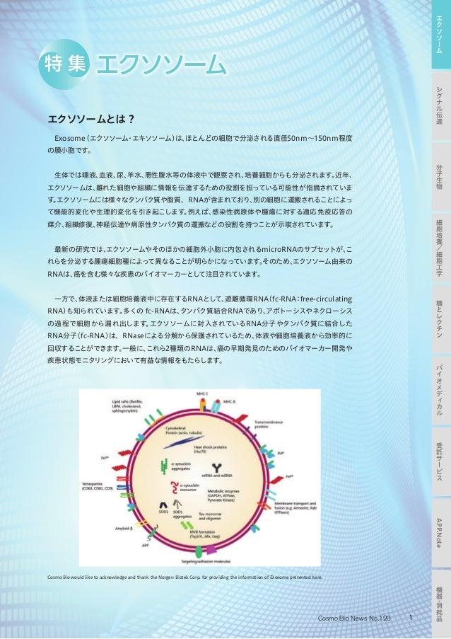 コスモバイオニュース No.120 (2016年08月)