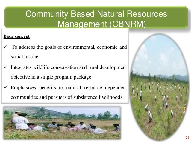 Natural Resources Data Management System