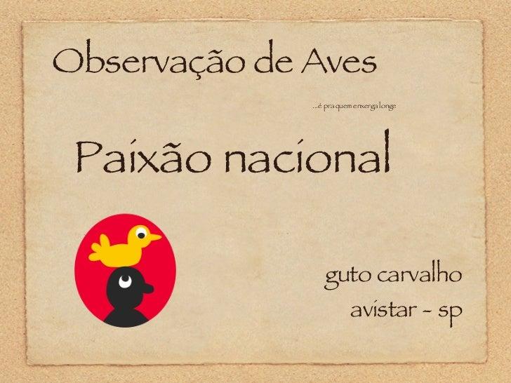 Observação de Aves ...é pra quem enxerga longe guto carvalho avistar - sp Paixão nacional