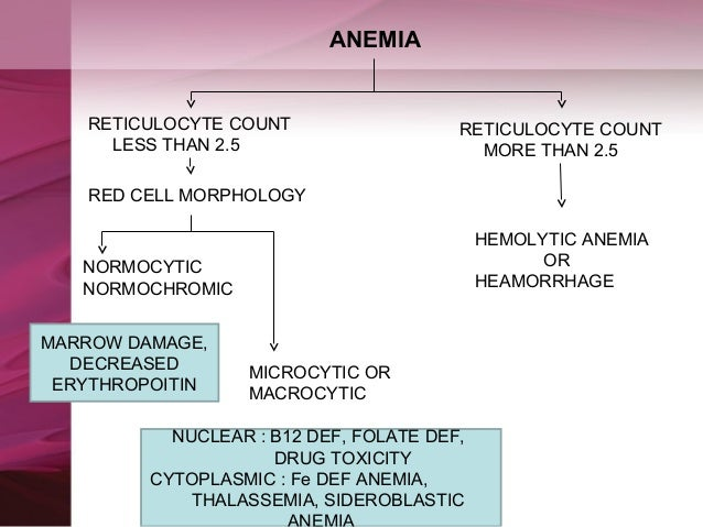 thesis on macrocytic anemia