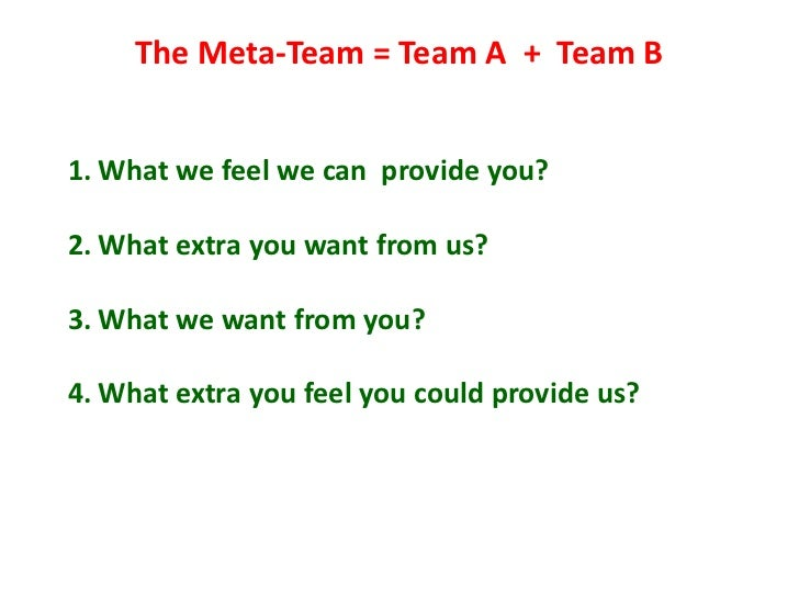 The Meta-Team = Team A + Team B   1. What we feel we can provide you?  2. What extra you want from us?  3. What we want fr...
