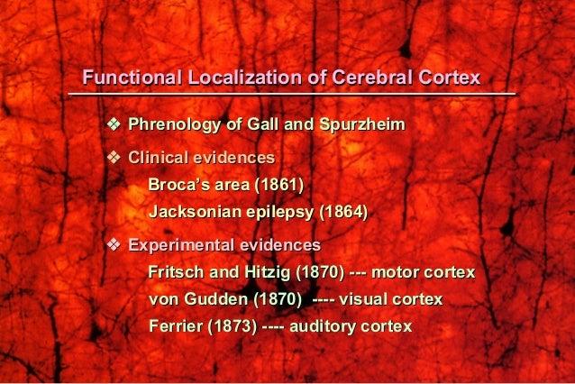  Phrenology of Gall and SpurzheimPhrenology of Gall and Spurzheim  Clinical evidencesClinical evidences Broca's area (...